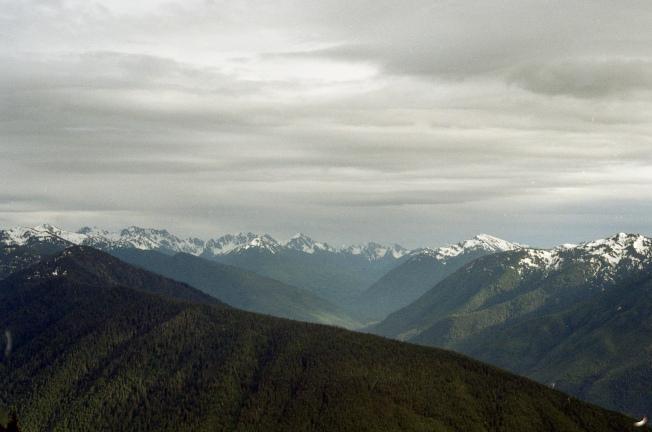 Hurricane Ridge #35mm